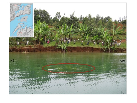 View of a landslide triggered by the Cyangugu-Bukavu earthquake on Ibinja Island (located by the arrow in the inset). The ellipse encircles the top of banana trees now underwater. Viewing directions are marked on both side of the picture. The landslide rupture has replaced the previously gentle slope of the shoreline. Source: d'Oreye et al. (2010)